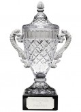 Glass Trophy/Cup